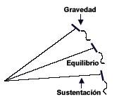 sustentacion